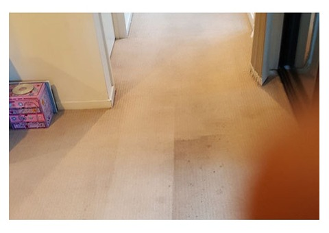 All Seasons Carpet Cleaning Service in Sunshine & Surrounding Suburbs