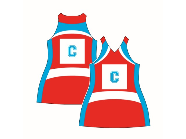 Netball dresses Perth, Custom made netball uniforms and Sports clothing - Mad Dog Promotions - 3/4